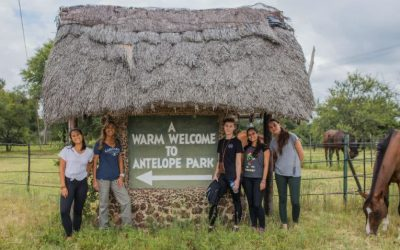 A Brief History of Antelope Park