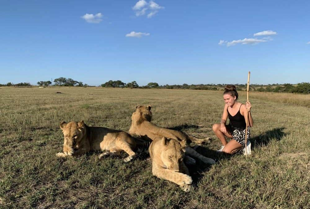 Emilie Hansen: Medical & Lion Conservation Project