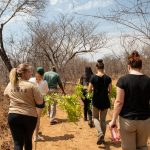 Victoria Falls Volunteer