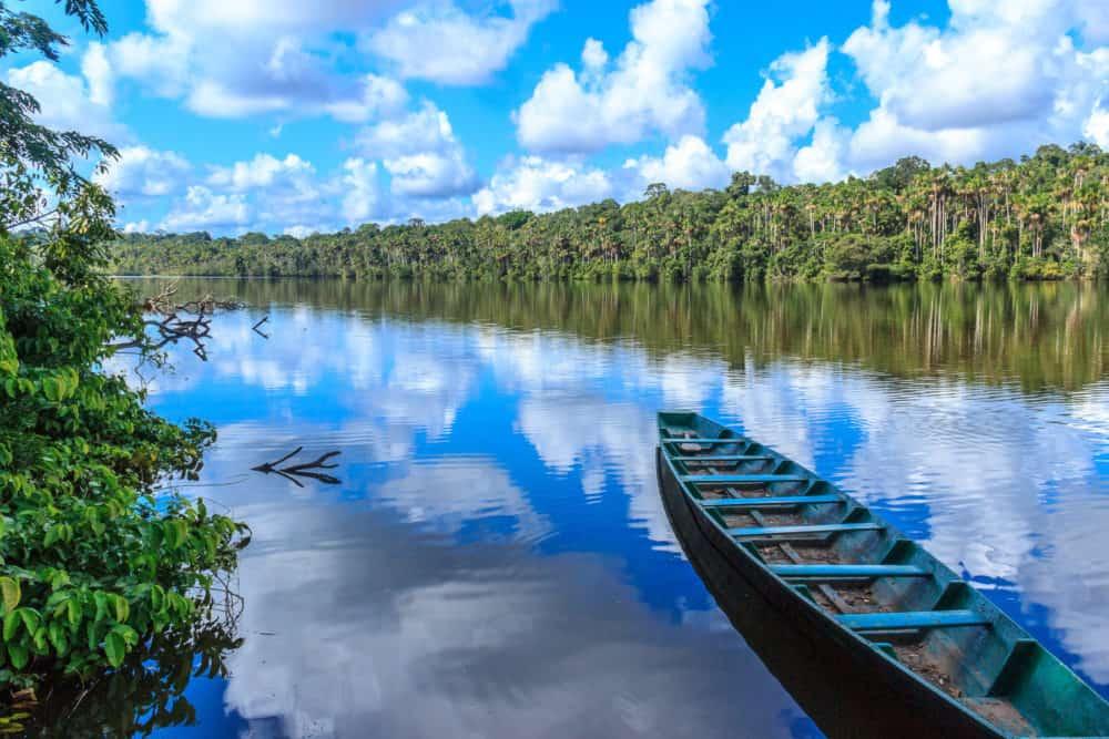Amazon Jungle, Brésil et Pérou