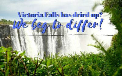 Victoria Falls has dried up? We beg to differ!
