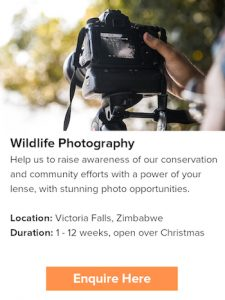 Learn photography at Victoria Falls during Christmas time