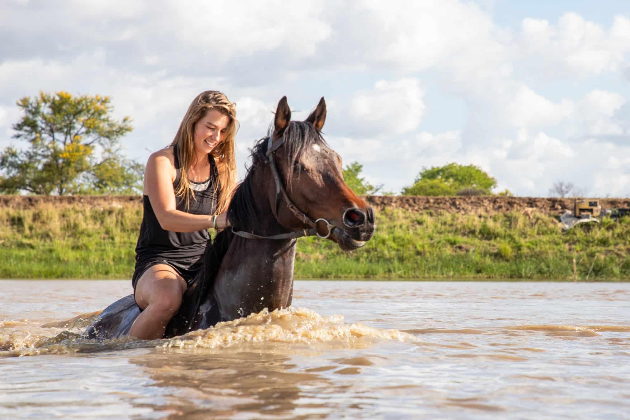 Can_Horses_Swim